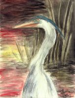 The Great Blue Heron by Alymae