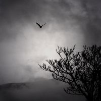 I Was Lost.. by nool2i