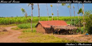 Home at Farm by TusharBoss
