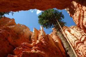 Bryce Canyon, Utah by Angus4greenie