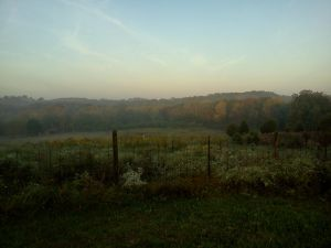The Corner at Dawn in Early Fall by dhbraley