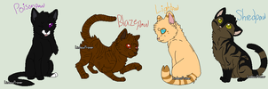 My Warrior cat apprentices-part 5 by TwilightLuv10