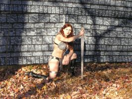 Red Sonja She Devil by red-sonja