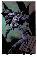Nowlan Batman, Catwoman colors by jharris