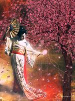 The Powers of Geisha by divalynn