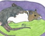 Baby rats snuggling by Cloudchild75
