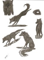 Wolf pose marker doodles. by Doub1ehe1ix