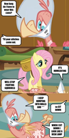 Text from Bird by Red-Rum-18