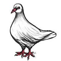 Pigeon for Hushpuppy by Enigmatic-Wolf