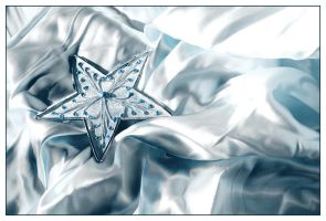 Winter Star by isky