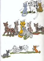 ThunderClan and Clan Leaders by WhyteHawke