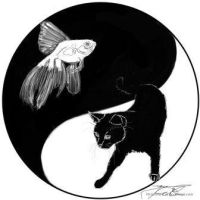 Yin Yang Black and White by Flynn-the-cat