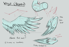 MLP:FiM | Wings reference sheet [Pegasus] by LividCreativity