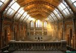 The Natural History Museum by ctrchris