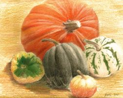Pumpkins by Pennamore