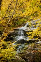 Waterfall framed by autumn by Vironevaeh