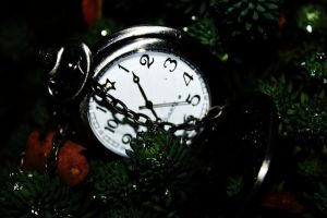 Forest clock by suhava