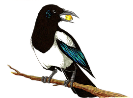 Magpie by GasMaskMonster