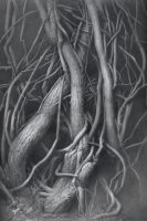 Roots by DChernov