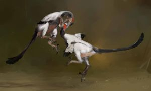Austroraptor fight by Guindagear