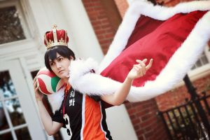 HQ!: King of the Court by firewolf826