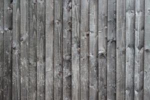 TL Wooden Planks 00030 001 FCN by texturelabs