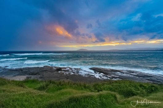 Black Head Reserve by andyhutchinson