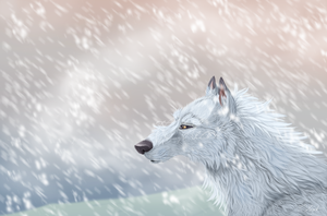The white wolf by hecatehell