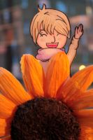 +aph+ Look at my sunflower! by rsLjubinka