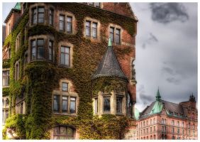 Old City Hall - Hamburg by matze-end