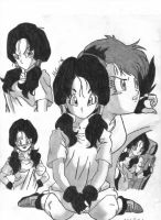 Videl Collage by mmcfacialhair