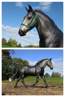 Breyer - Limerick by The-Toy-Chest