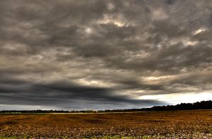 Field HDR by Asoflate