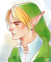 Link Portrait by emengel