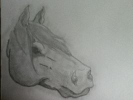 Cross hatched horse portrait by Cameos-Equine