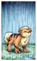 Growlithe doesn't approve by clacier