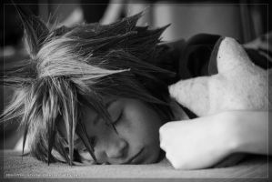 Sleepy-time Sora by Weatherstone