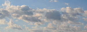 851x 315 Facebook Cover - Clear Skys N Clouds Bkg by DanaHaynes