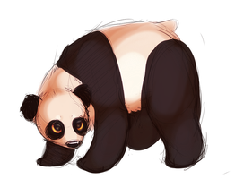 tiny panda by FlSHBONES