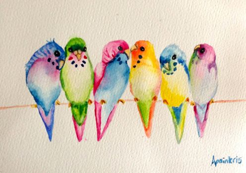 A chattering of budgies by annabellepainter
