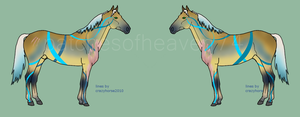 Unnat Stud SOLD by patchesofheaven74