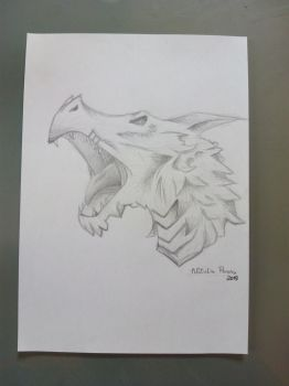 Dragon by wolfland2
