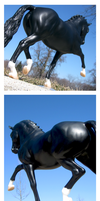 Breyer - Grace And Power by The-Toy-Chest