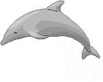 Dolphin pixels by Hiperyon