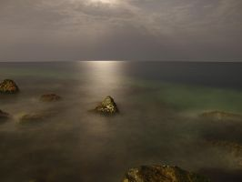 Under the Moon Light 6 by mhmalali