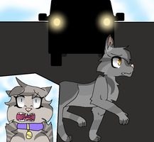 'GreyStripe! Get out of the way!' by stingfish101