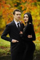 The Addams Family - Morticia and Gomez by tajfu
