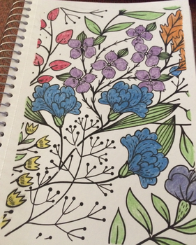 Coloring 14 by lexiepoo15