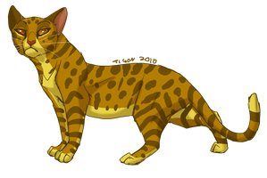 Leopardstar by tigon