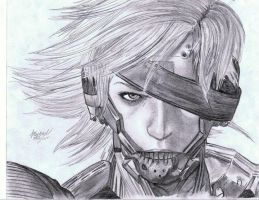 Raiden by MichaelWarrenTaylor